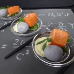 Science themed trays