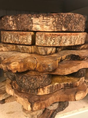 wooden tree slices